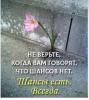 Помощь Потерпевшим (пострадавшим) от преступлений в СПб и ЛО